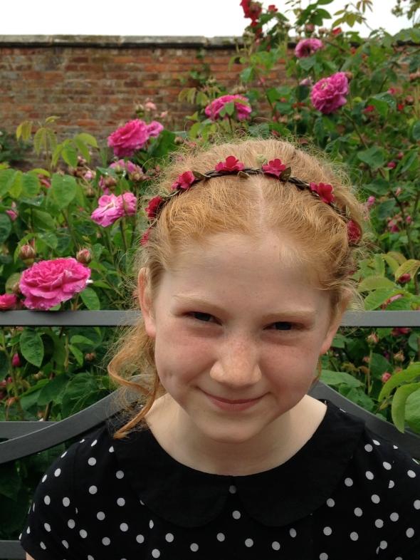 Dunham Massey Rose Garden