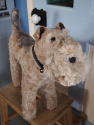 Mabel Lakie terrier