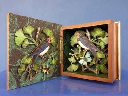 5 Bullfinches in Ginkgo Tree